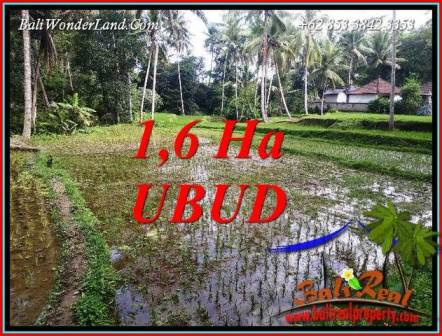 FOR sale Beautiful 16,000 m2 Land in Ubud Bali TJUB735