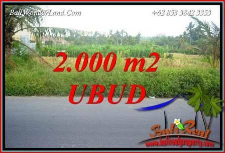 Affordable Property Land in Ubud for sale TJUB737