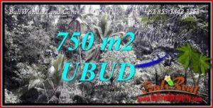 Exotic Ubud Land for sale TJUB742