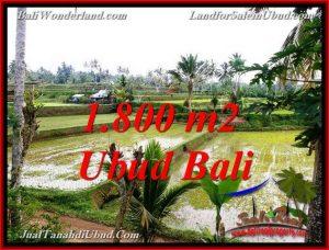 1,800 m2 LAND FOR SALE IN UBUD BALI TJUB769