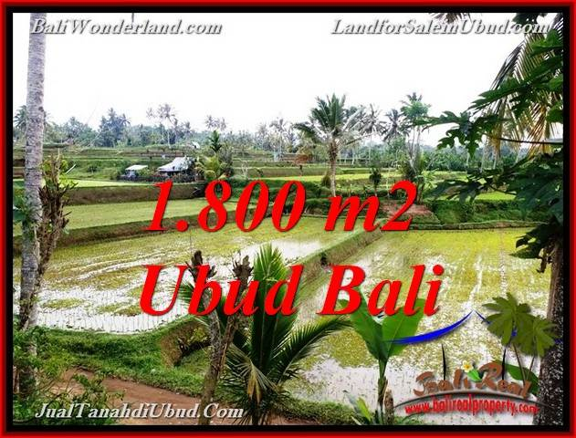 FOR SALE Beautiful PROPERTY LAND IN UBUD TJUB769