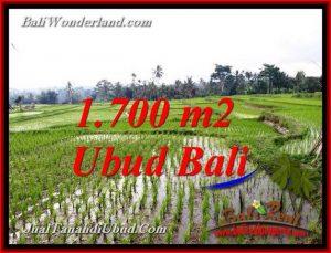 Exotic 1,700 m2 LAND SALE IN UBUD BALI TJUB770