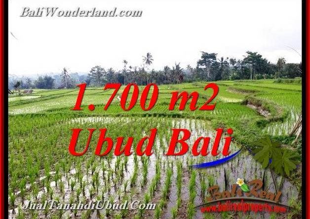 Exotic 1,700 m2 LAND SALE IN UBUD BALI TJUB770