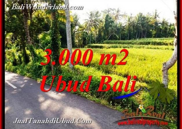 Beautiful UBUD LAND FOR SALE TJUB771
