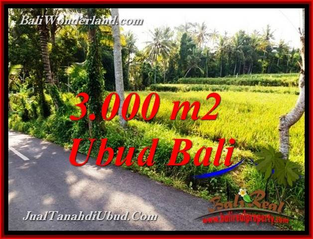 Magnificent LAND IN UBUD FOR SALE TJUB771