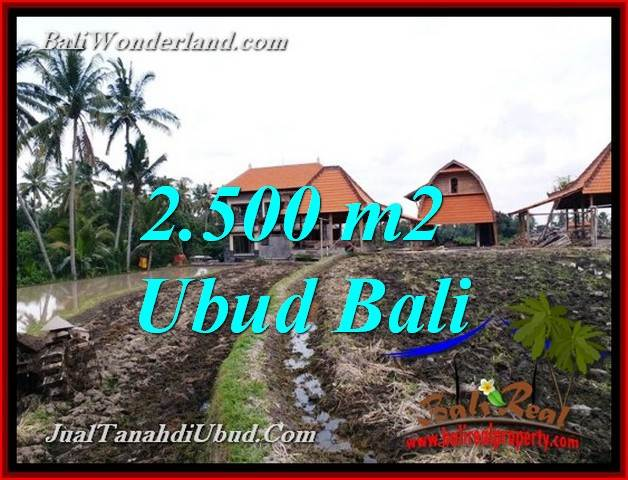 Exotic PROPERTY LAND FOR SALE IN UBUD BALI TJUB772