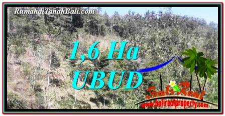 Beautiful UBUD LAND FOR SALE TJUB748