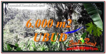 Exotic UBUD LAND FOR SALE TJUB750