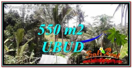 FOR SALE Magnificent LAND IN UBUD TJUB751