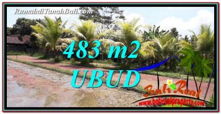 FOR SALE Beautiful 483 m2 LAND IN UBUD BALI TJUB752
