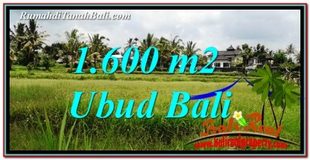 Beautiful PROPERTY 1,600 m2 LAND FOR SALE IN Ubud Tampak Siring BALI TJUB756