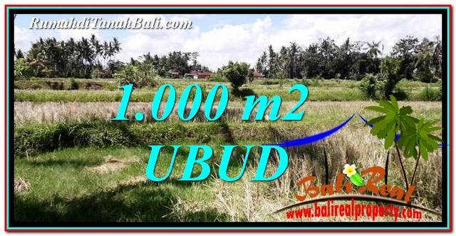 Magnificent PROPERTY LAND SALE IN UBUD BALI TJUB760