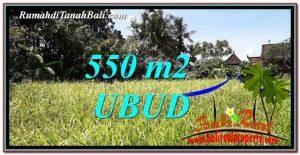 Beautiful Sentral Ubud 550 m2 LAND FOR SALE TJUB766