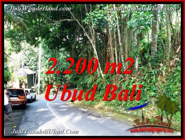 Magnificent PROPERTY 2,200 m2 LAND IN SENTRAL UBUD FOR SALE TJUB768