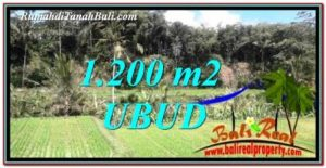 FOR SALE Beautiful PROPERTY LAND IN UBUD TJUB746