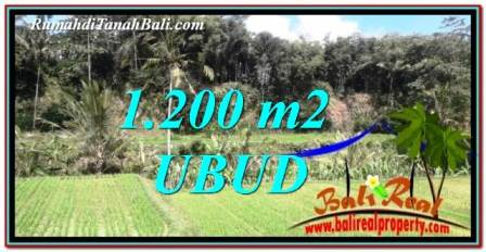 Magnificent PROPERTY LAND SALE IN UBUD TJUB746