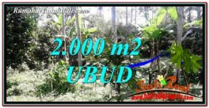 2,000 m2 LAND IN UBUD BALI FOR SALE TJUB747
