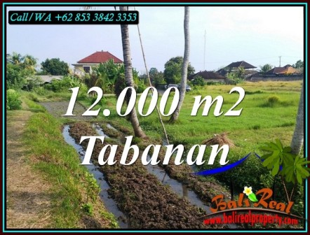 KERAMBITAN TABANAN 12,000 m2 LAND FOR SALE TJTB502