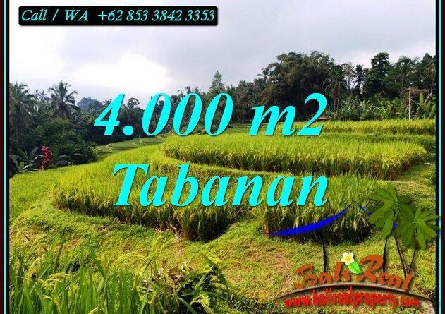 LAND IN TABANAN BALI FOR SALE TJTB499A