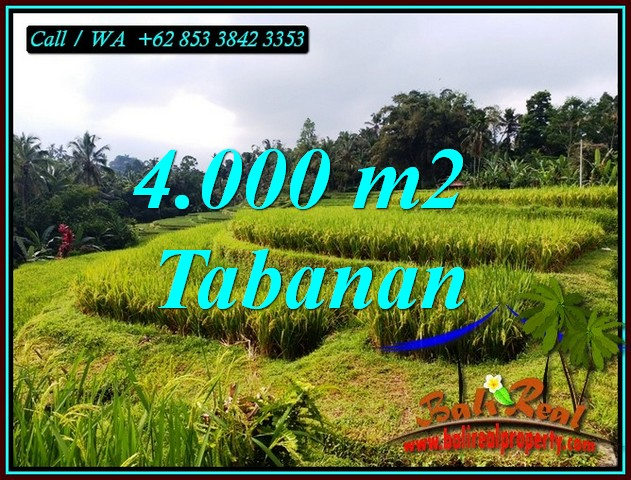 Beautiful PROPERTY 4,000 m2 LAND IN TABANAN FOR SALE TJTB499A