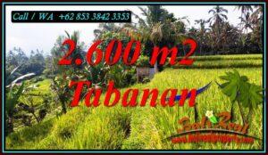 FOR SALE Beautiful PROPERTY LAND IN PENEBEL TABANAN TJTB499B