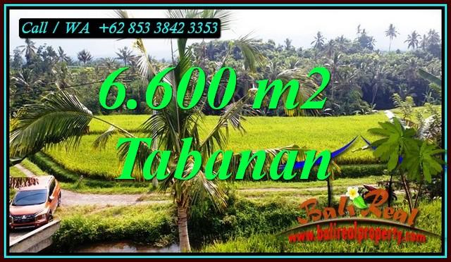 Affordable PROPERTY LAND SALE IN PENEBEL TABANAN TJTB499C
