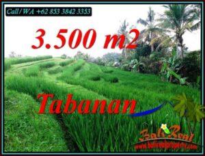 Beautiful LAND FOR SALE IN SELEMADEG TIMUR TABANAN TJTB500