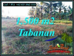 FOR SALE Cheap property 1,500 m2 LAND IN SELEMADEG BARAT BALI TJTB497