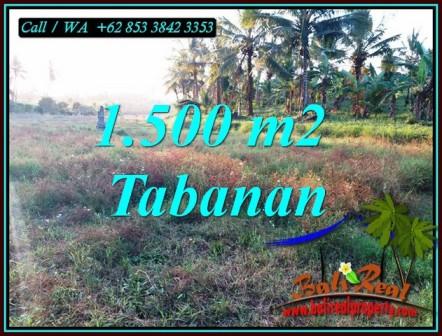 Affordable PROPERTY 1,500 m2 LAND SALE IN SELEMADEG BARAT BALI TJTB497