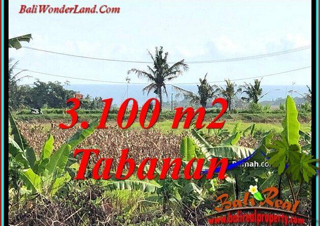 FOR SALE Beautiful PROPERTY LAND IN KERAMBITAN TABANAN TJTB485