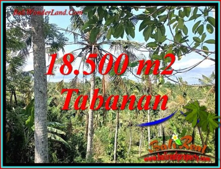 Exotic TABANAN BALI LAND FOR SALE TJTB487