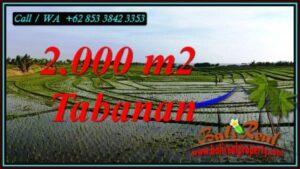 Affordable LAND IN TABANAN BALI FOR SALE TJTB493