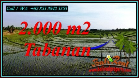 LAND FOR SALE IN TABANAN BALI TJTB493