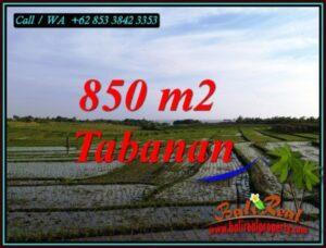 Exotic PROPERTY LAND FOR SALE IN SELEMADEG TIMUR BALI TJTB494