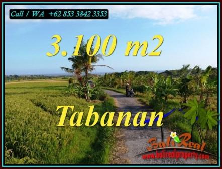 Beautiful LAND FOR SALE IN SELEMADEG TABANAN TJTB496