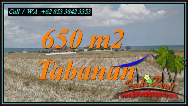 650 m2 LAND SALE IN SELEMADEG TABANAN TJTB453