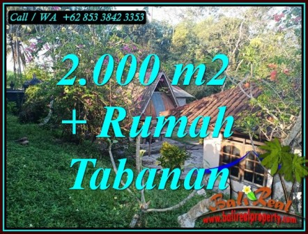 FOR SALE Beautiful LAND IN TABANAN BALI TJTB455