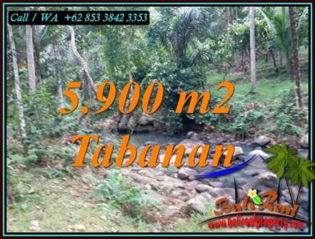 Beautiful PROPERTY 5,900 m2 LAND IN TABANAN FOR SALE TJTB458