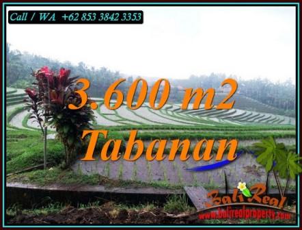Affordable PROPERTY LAND IN SELEMADEG TABANAN FOR SALE TJTB461