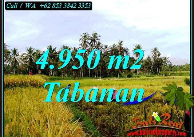 Beautiful LAND SALE IN TABANAN BALI TJTB464