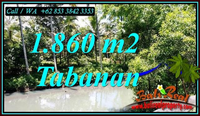 LAND IN TABANAN BALI FOR SALE TJTB467