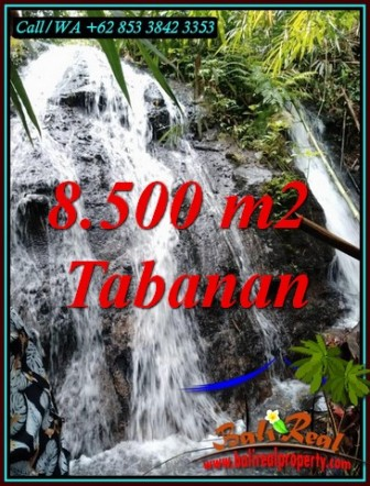 Magnificent PROPERTY 8,500 m2 LAND FOR SALE IN TABANAN TJTB478