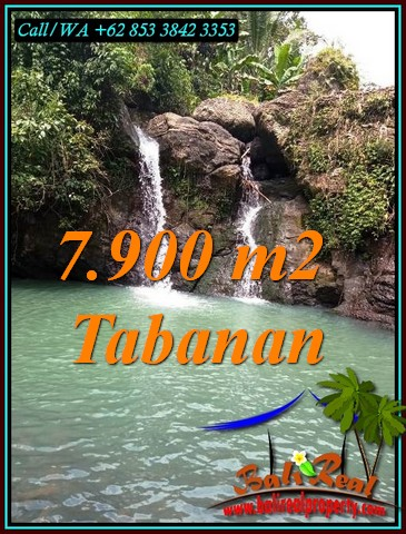 Exotic LAND FOR SALE IN SELEMADEG BARAT TJTB479