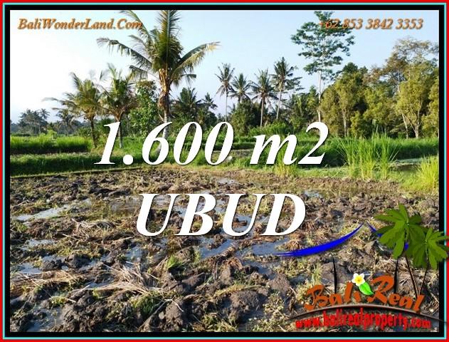 FOR SALE 1,600 m2 LAND in Tampaksiring TJUB807