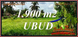 Exotic Tampaksiring BALI 1,900 m2 LAND for SALE TJUB811