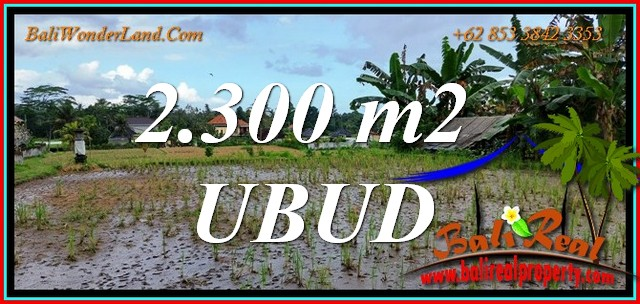 Cheap property LAND for SALE in Tampaksiring TJUB813